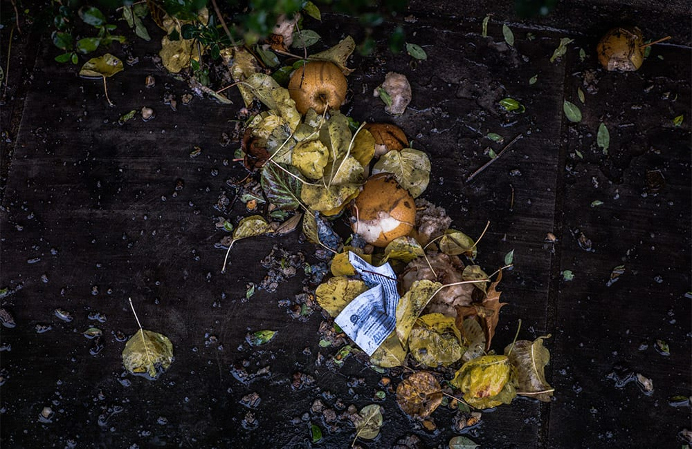 Food waste – the dilemma between packaging functionality and sustainability in this hidden problem